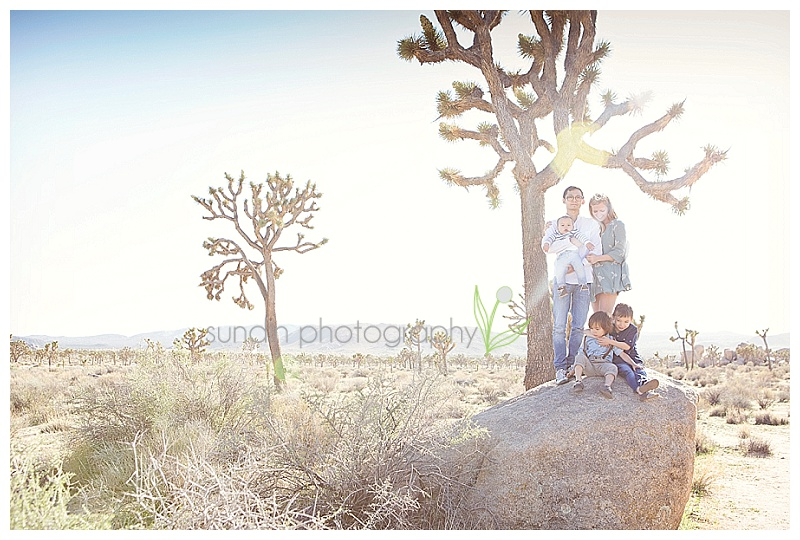 Joshua Tree family photo shoot