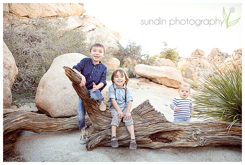 Family photography in Joshua tree